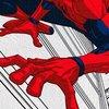 Kit Spider-Man imagem 1